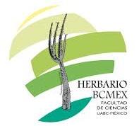 Herbario de la Universidad Aut�noma de Baja California (BCMEX)