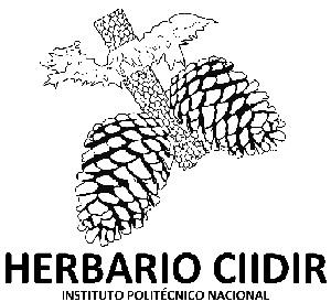 Herbario del Instituto Polit�cnico Nacional-Unidad Durango (CIIDIR)